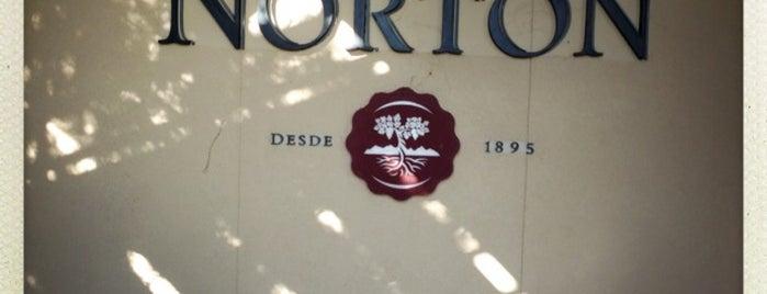 Bodega Norton is one of Experience Mendoza.