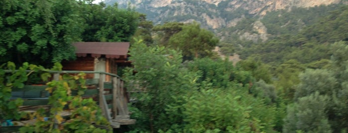 Kabak Natural Life is one of Fethiye.