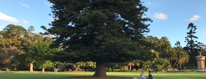 Royal Botanic Garden is one of Lieux qui ont plu à Pin.