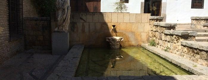 Plaza Séneca is one of Iñigo 님이 좋아한 장소.