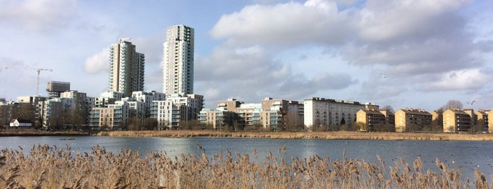 Woodberry Wetlands is one of London.