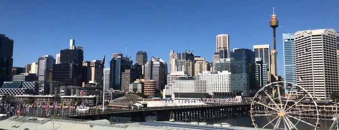 Novotel Sydney on Darling Harbour is one of Down under? I hardly know her!.