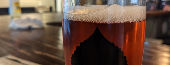 Bosque Brewing Company Las Cruces is one of NM July 2018.