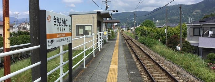 Sagami-Kaneko Station is one of JR 미나미간토지방역 (JR 南関東地方の駅).