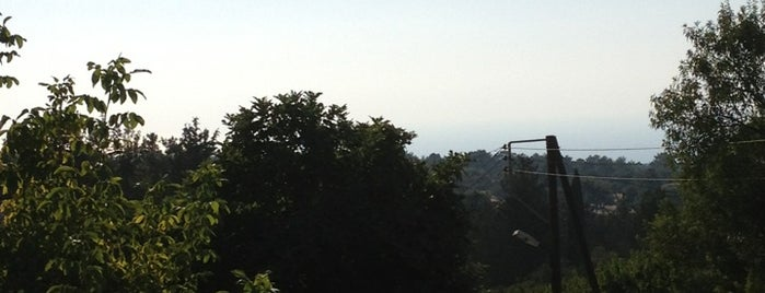 Chartzia is one of สถานที่ที่ Bego ถูกใจ.