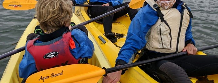 Monterey Bay Kayaks is one of Posti che sono piaciuti a Brittany.