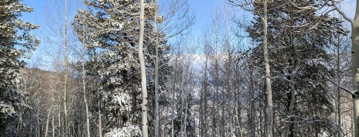 Beaver Creek Resort is one of Colorado Ski Areas.