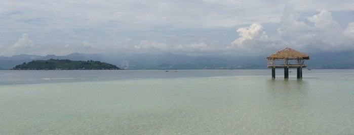 Manjuyod White Sandbar is one of Philippines.