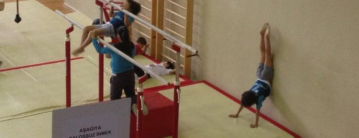 Türkiye Cimnastik Federasyonu is one of Onder: сохраненные места.