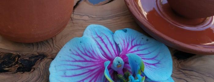 Lilyum Flower & Chocolate is one of Tekirdag Gidilecek Yerler.