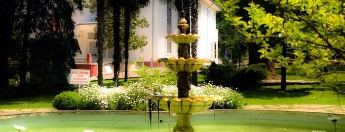 Ataturk Arboretumu is one of Yalova.