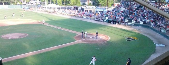 Fleming Stadium is one of Baseball Stadiums To Visit.