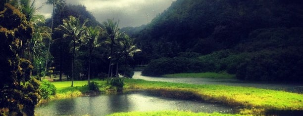 Waimea Valley is one of Hawaii.