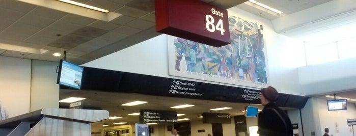 Gate F15 is one of สถานที่ที่ B David ถูกใจ.