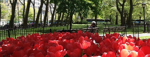 Theodore Roosevelt Park (Museum Park) is one of NYC Places II (Sightseeing).