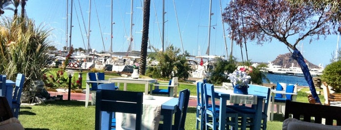 Mozart Cafe is one of Bodrum Bodrum.
