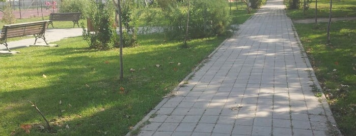 Parcul Divertis is one of Бэкау.
