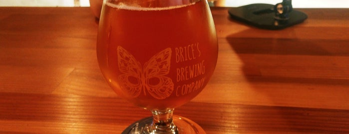 Brice's Brewing Company is one of Breweries or Bust 3.