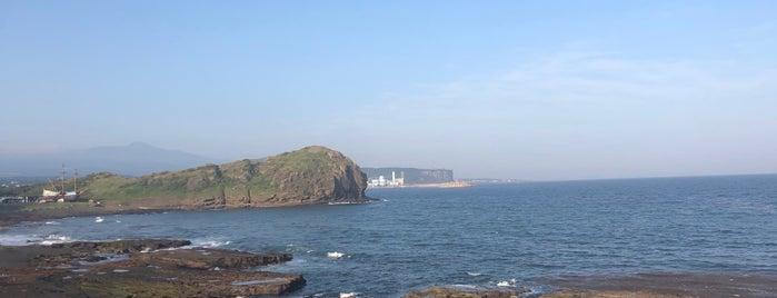 남경미락 is one of Tempat yang Disimpan Dan.