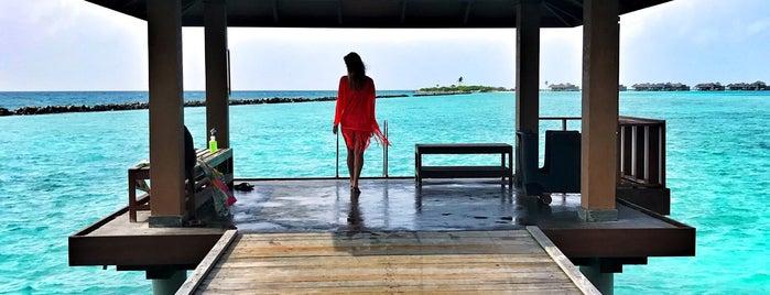 Maldives is one of Tempat yang Disukai Nese.