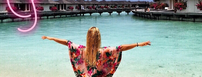 Paradise Island Resort Beach is one of Nese : понравившиеся места.