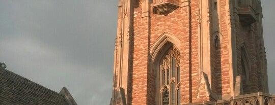 Concordia Seminary is one of Lugares favoritos de John.