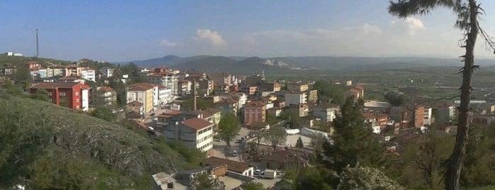 Kavak is one of ilçeler - Tüm Türkiye.