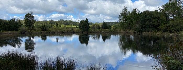 Anodard Pond is one of เลย, หนองบัวลำภู, อุดร, หนองคาย.