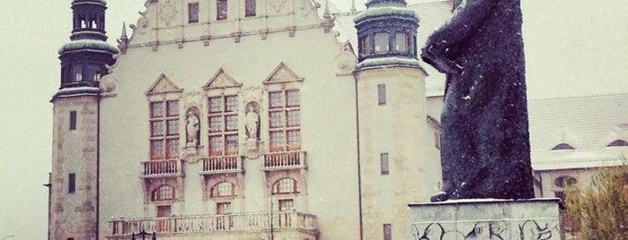 Plac Adama Mickiewicza is one of Poznan!.