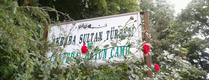 Akbaba Sultan Türbesi is one of Anadolu | Spiritüel Merkezler.