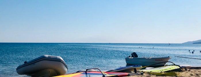 Uğurlu Plajı is one of Biga Yarımadası.