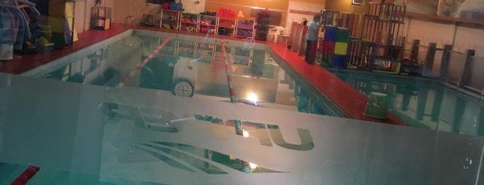 Academia Upper Sport Clube is one of Locais curtidos por Raphael.