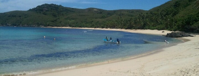 Octopus Resort is one of Great Scuba.