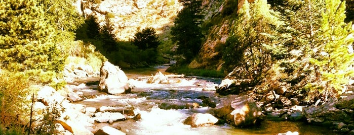 Clear Creek Canyon is one of CO Fly Fishing.