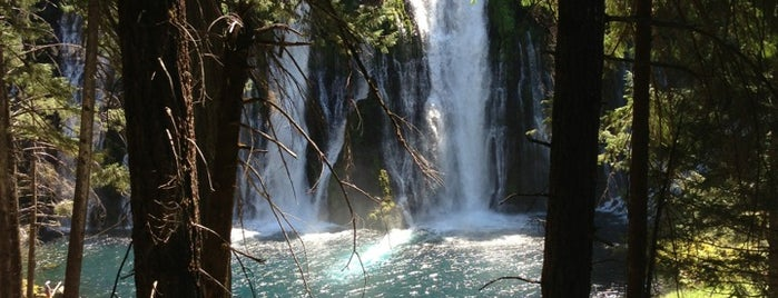 McArthur-Burney Falls Memorial State Park is one of California Travel Tips -さんのお気に入りスポット.