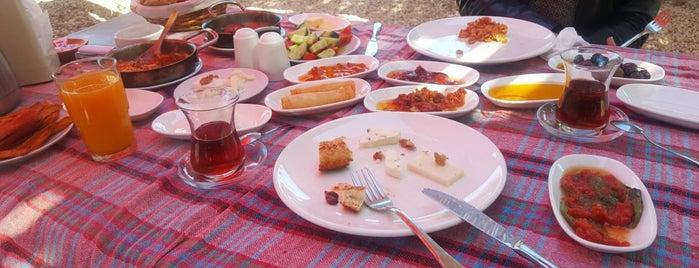 Serpecem Bahçe Kahvaltı is one of Orte, die Burcu gefallen.