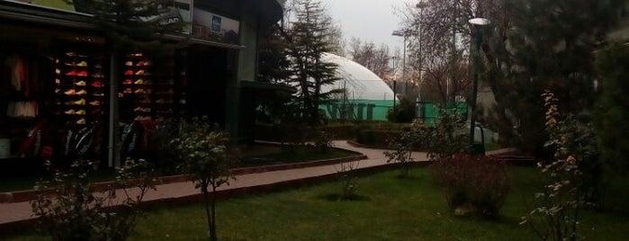 Ankara Tenis Kulübü is one of Tülay .................. 님이 좋아한 장소.