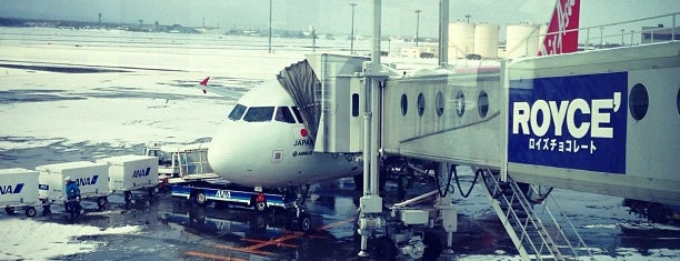 New Chitose Airport (CTS) is one of Travel.