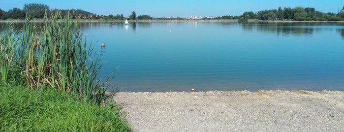 Přehrada Olešná is one of Lakes.