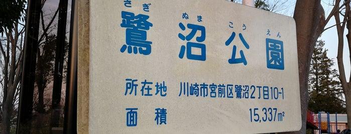 鷺沼公園 is one of Shinichi : понравившиеся места.