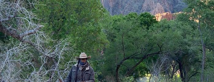 Phantom Ranch is one of AE Spring Break.