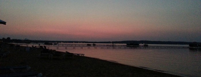 Traverse City State Park is one of michigan.