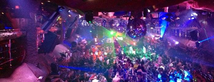 Tiger Night Club is one of Orte, die Марина gefallen.
