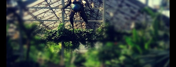 Garfield Park Conservatory is one of Traveling Chicago.