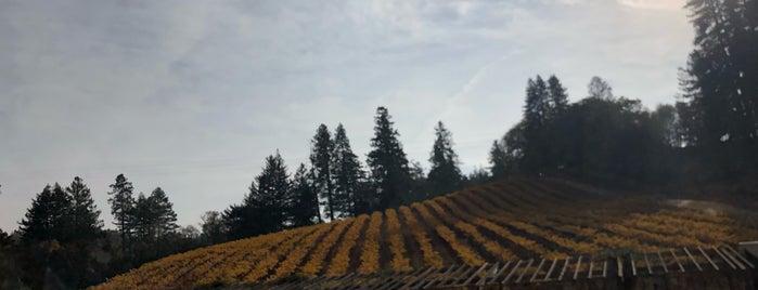 Theorem Vineyards is one of Orte, die Julia 🌴 gefallen.