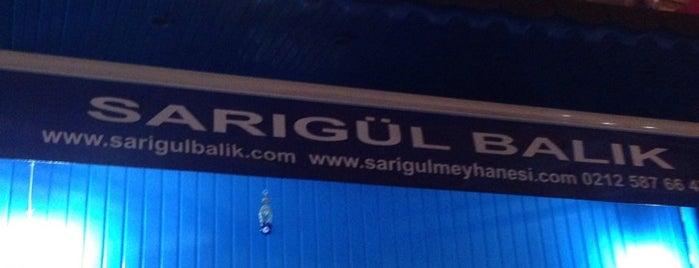 Sarigul Raki&Balik Samatya is one of meyhanedeyiz.biz.