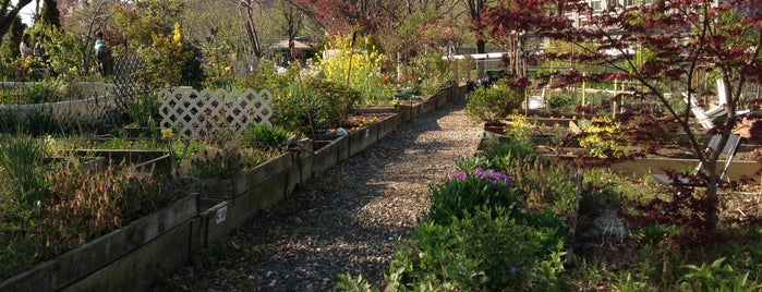 Roosevelt Island Community Gardens is one of Make NYC Your Gym: In Transit.