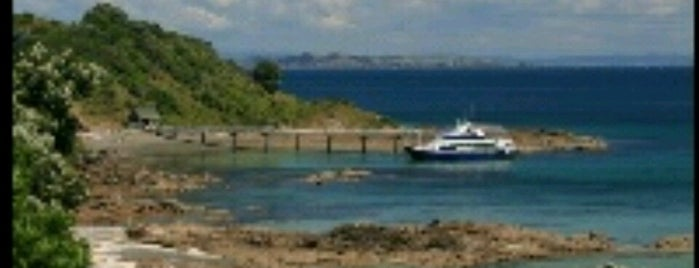 Tiritiri Matangi Ferry is one of Locais curtidos por T..