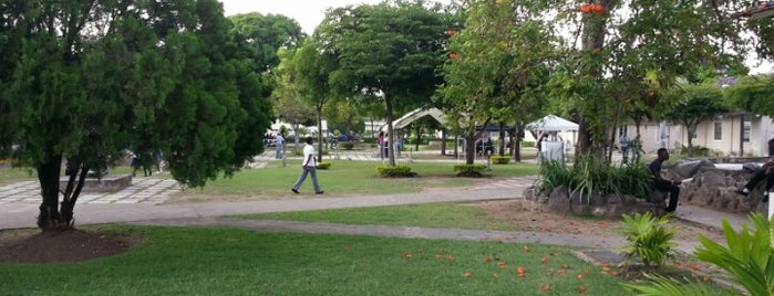 Caribbean Sculpture Park is one of Stuff to do in Kingston, Jamaica.