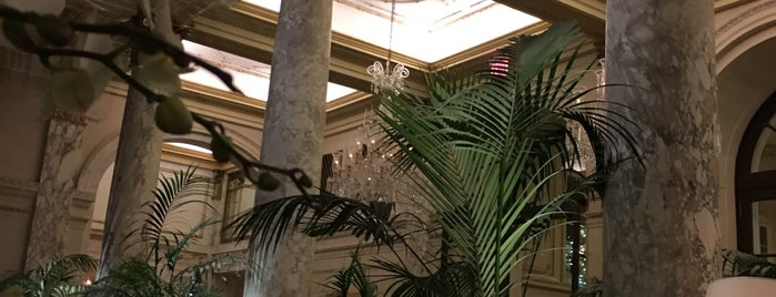 The Palm Court at The Plaza is one of Manhattan 2.
